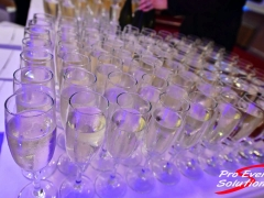Pro_Event_Solutions_Summer_Ball_010